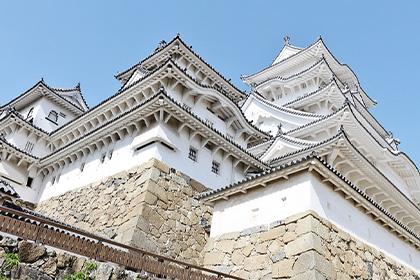 姫路城西心柱は「運命の木」